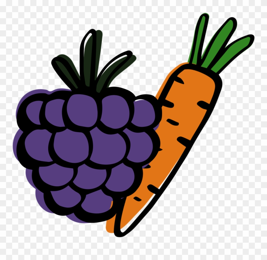 Grape Clipart Fruit Individual Png Download 3563039