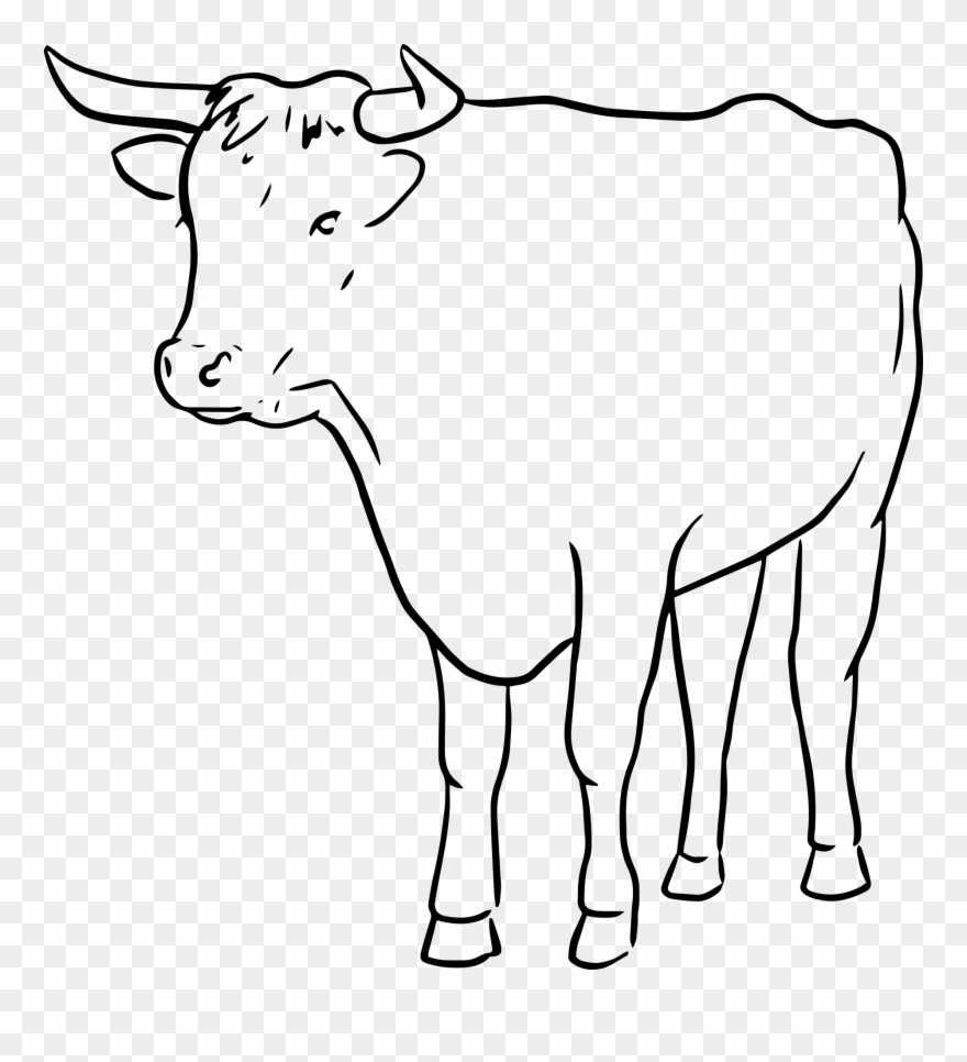 Cow outline. Clip art line drawing