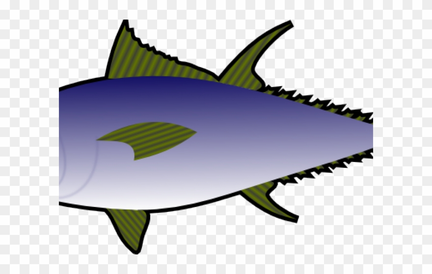Fish tuna. Clip art png download