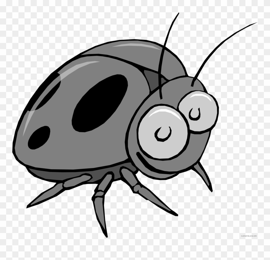Insect Bug Animal Free Black White Clipart Images ...