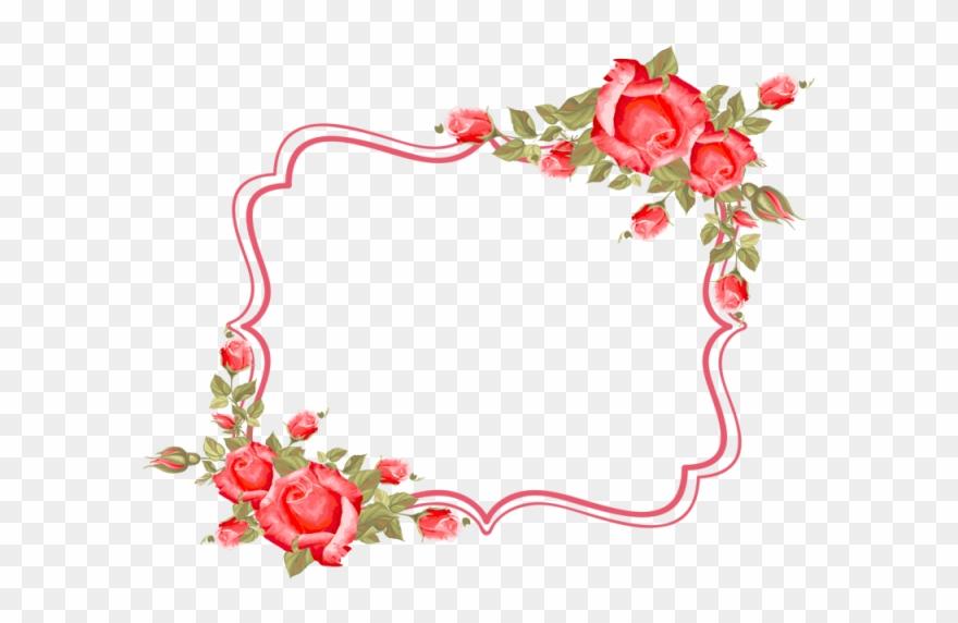 Frame Flower Roses Frame Border Rose Wedding Vector Floral