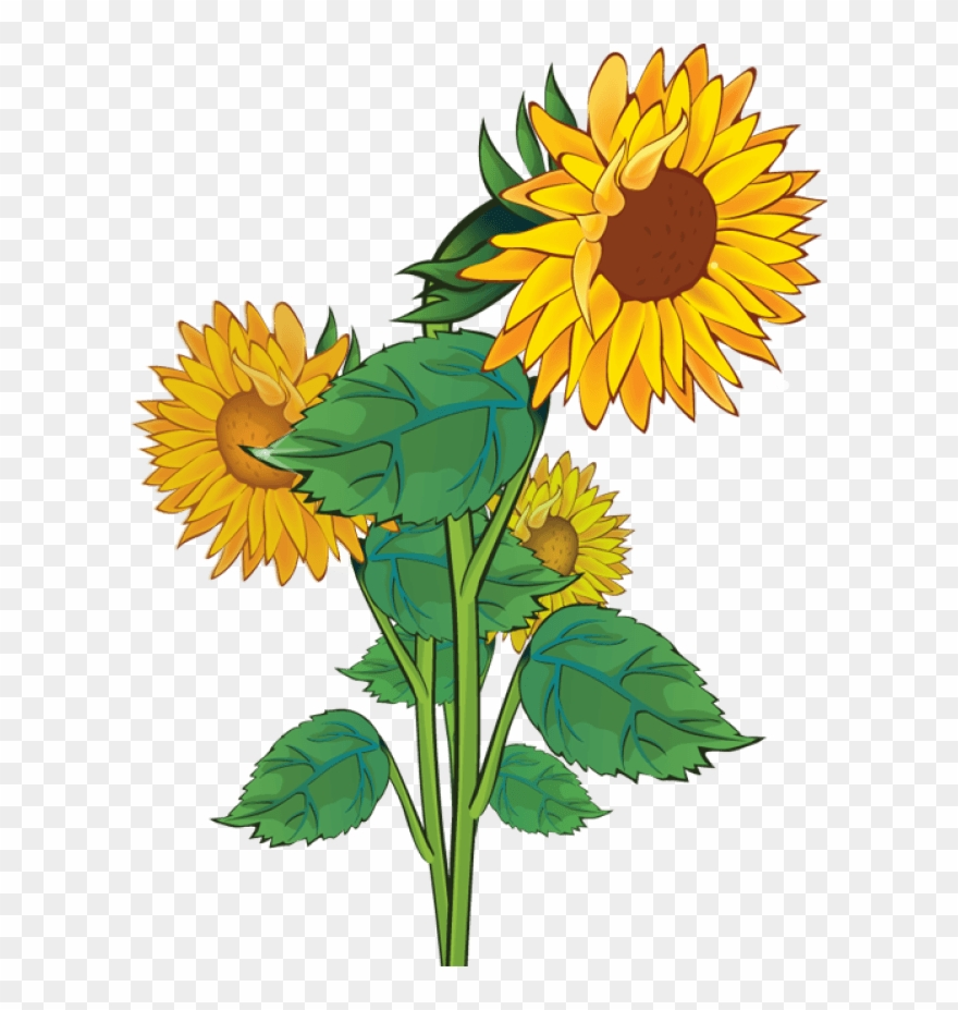 Free Plant Sale Cliparts, Download Free Clip Art, Free Clip Art on Clipart  Library
