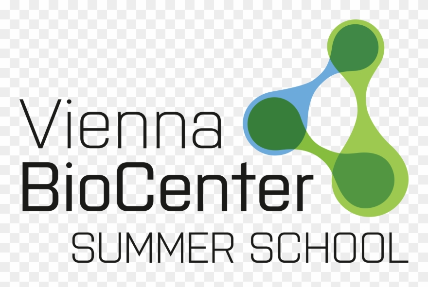 Logo Vienna Biocenter Summer School Vbc Summer School