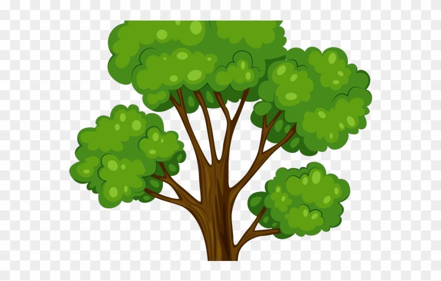 Papaya Clipart Papaya Leaf Tree Cartoon Vector Png Transparent Png 3838241 Pinclipart