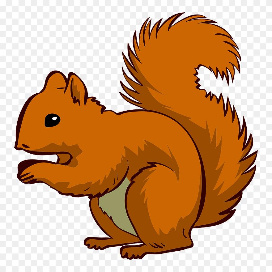 Lesen Cartoon Squirrel No Background Clipart Full Size