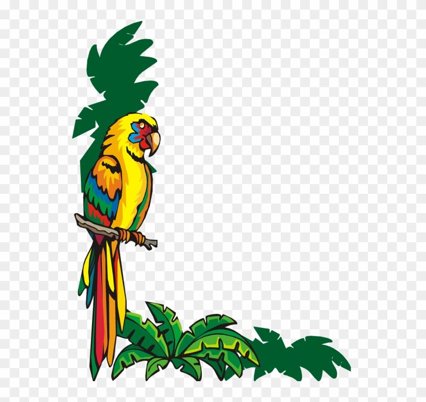 Bordure De Page Word Oiseau Bordure De Page Animaux