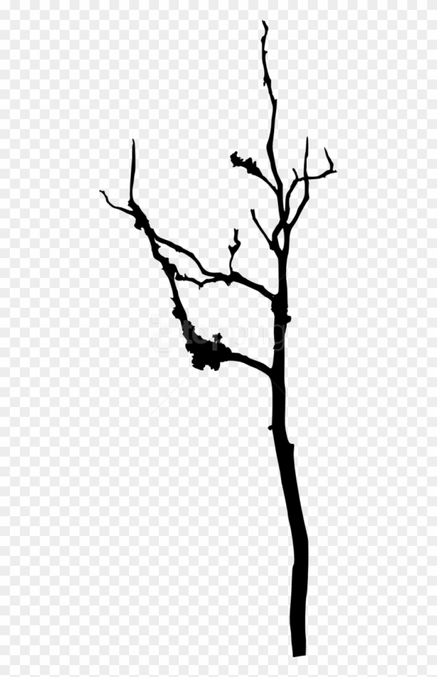 Free Png Bare Tree Silhouette Png Images Transparent Silhouette