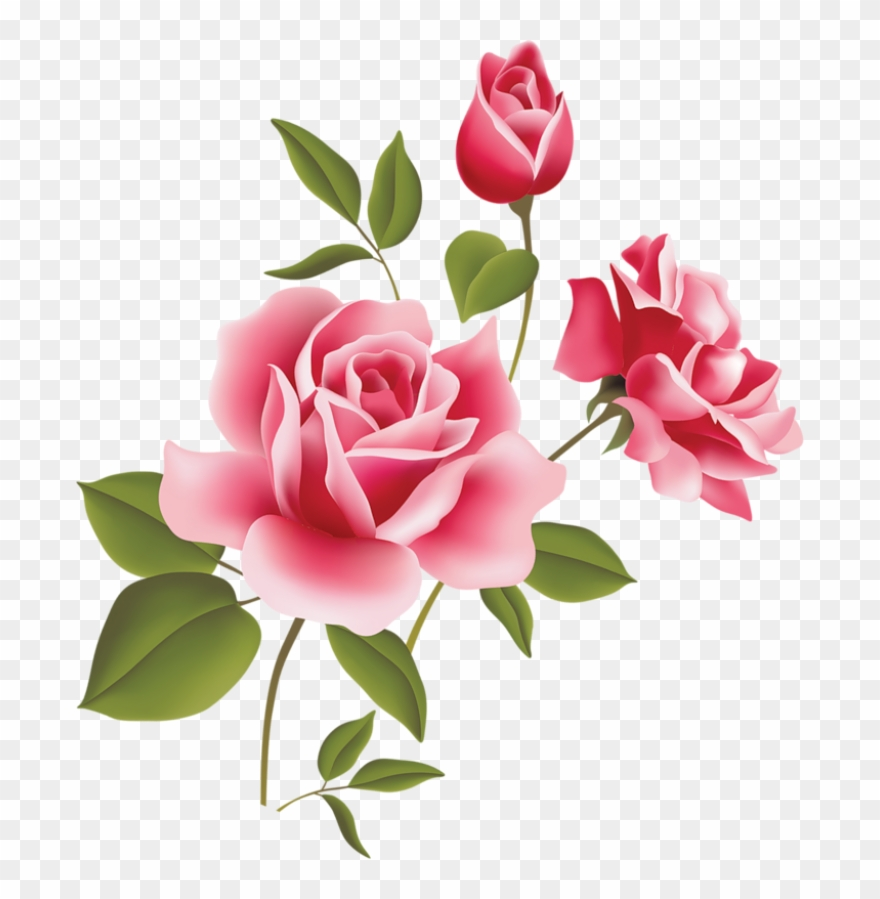 Art Rose Free Download Clip Art Free Clip Art On Clipart - Pink Rose Flower Png Transparent Png