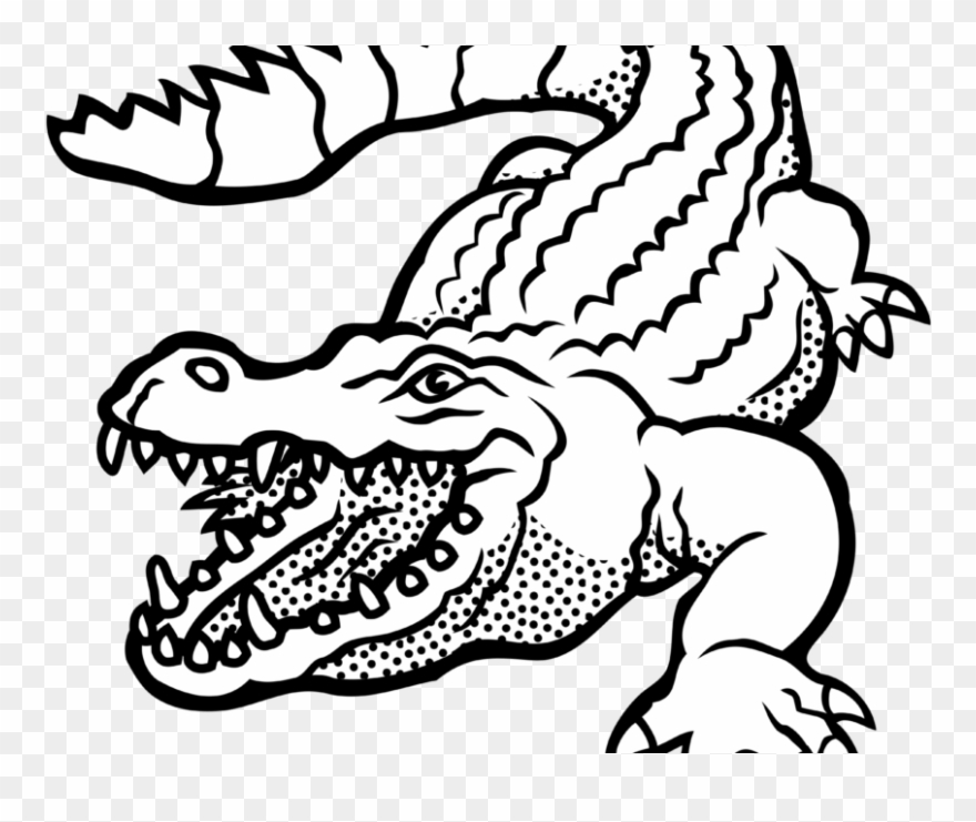 Alligator Clipart Images Black And White Free Download