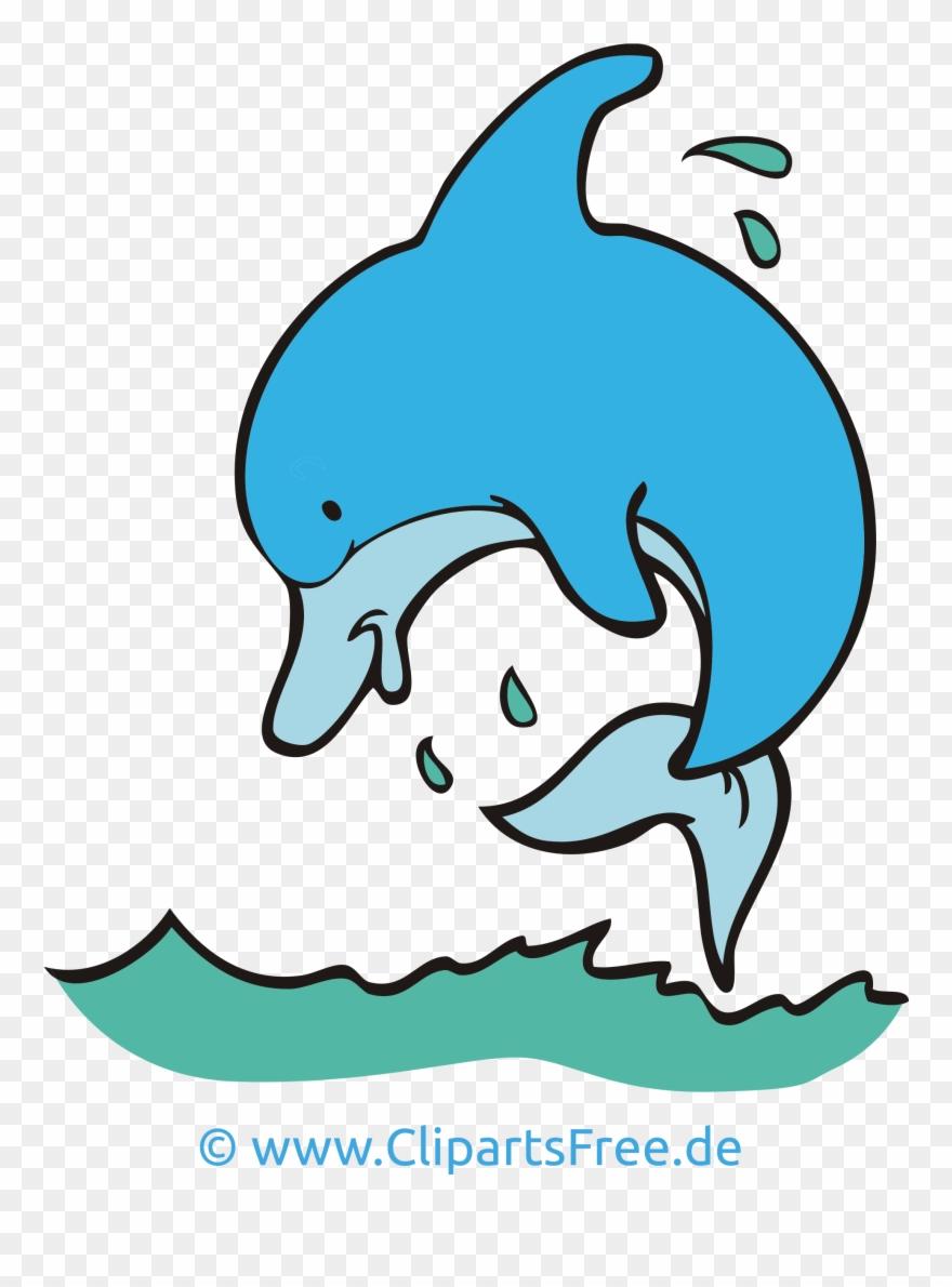 ausmalbild delphin kostenlos  kinder ausmalbilder