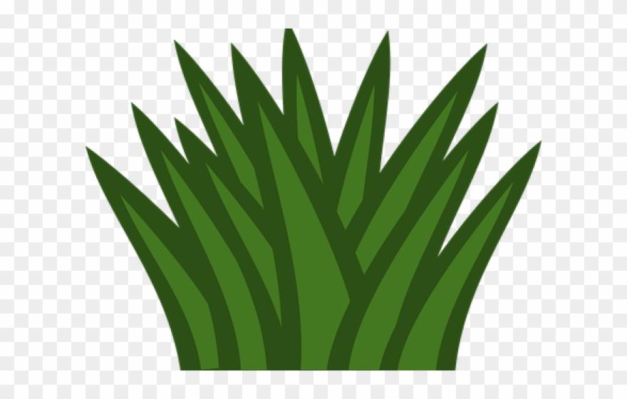 Dry Grass Clipart Desert Shrub - Clipart Bushes - Png Download