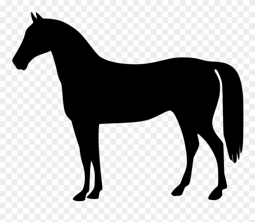 Horse standing. Clipart of horses the