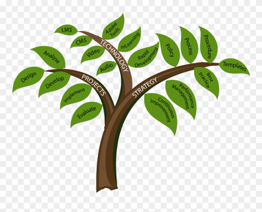 0e922b04cc5 Consultation Services Provided By Mary Hetherington - Learning And  Development Tree Clipart