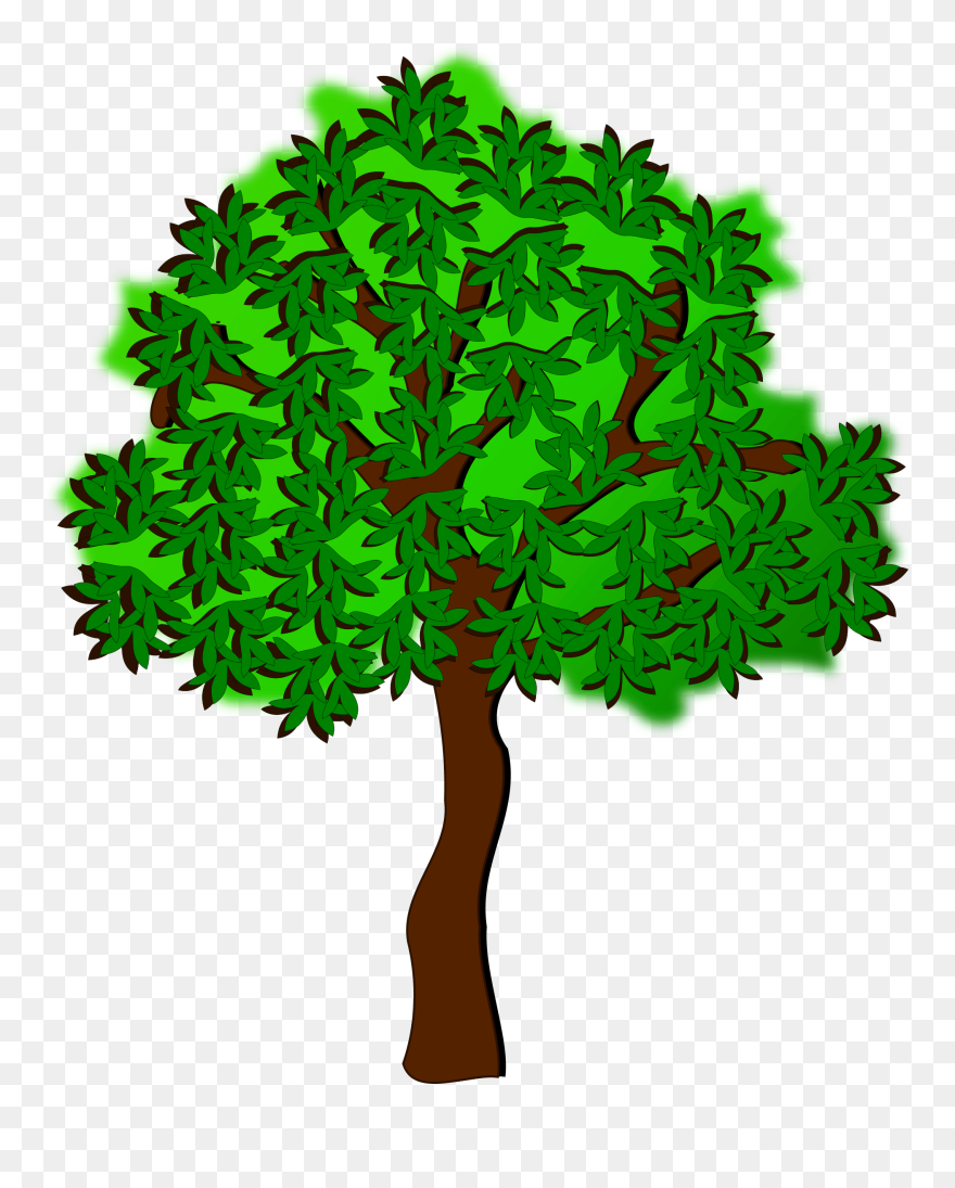 Summer Season Tree Autumn Drawing Summer Tree Clipart Png