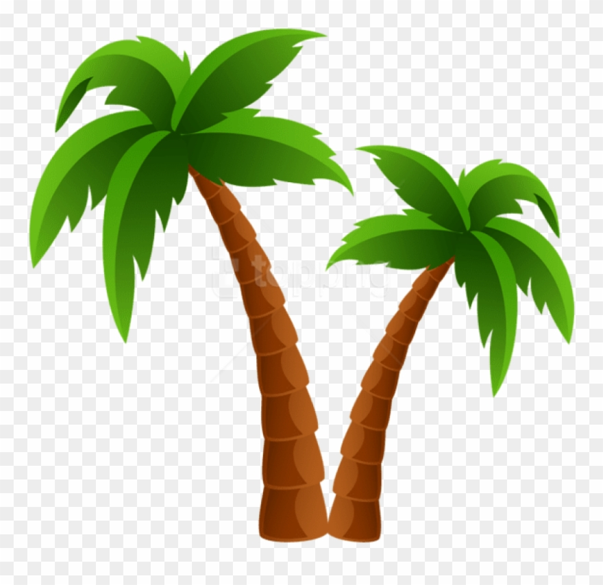 Free Png Download Two Palm Trees Png Images Background Cartoon Palm Tree Png Clipart Full Size Clipart 4204087 Pinclipart Winter, spring, summer, and autumn. free png download two palm trees png
