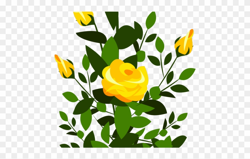 Yellow Rose Clipart Cute - Rose Bush Clipart - Png Download