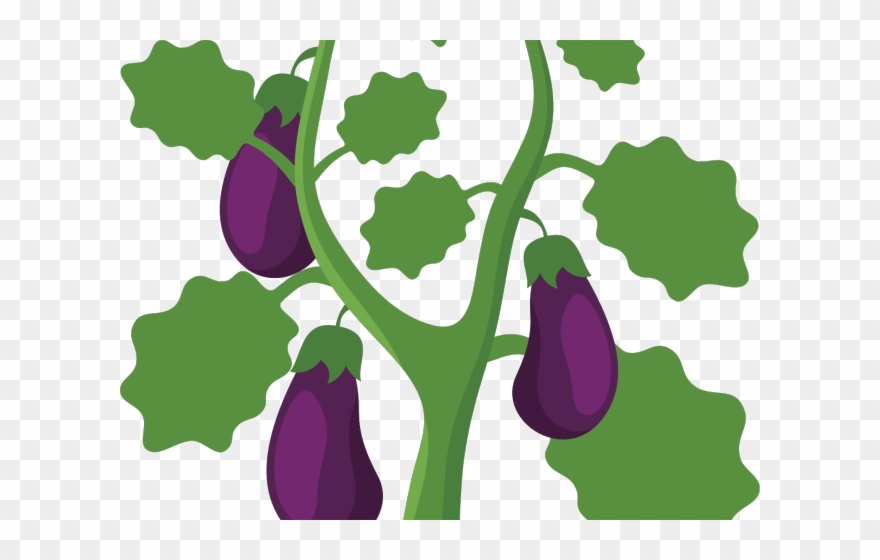 Tree Clipart Eggplant Png Download 4480448 Pinclipart