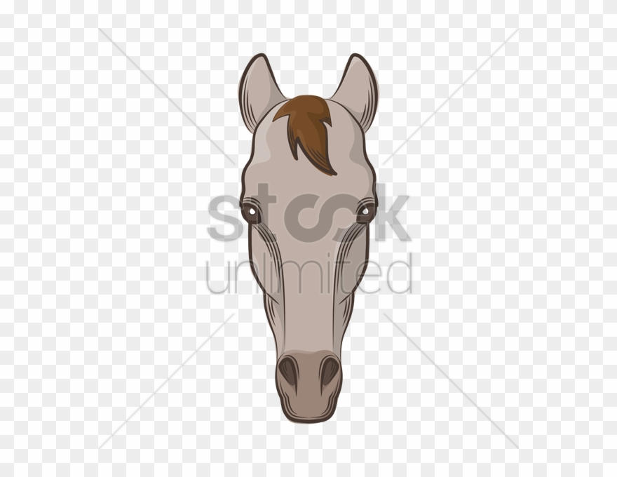 Drawing Clipart Horse Drawing Horse Face Drawing Png Download