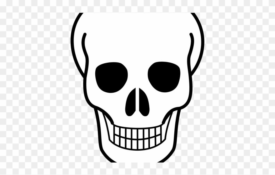 Stock Free On Dumielauxepices Net Cranium Easy Simple Skull