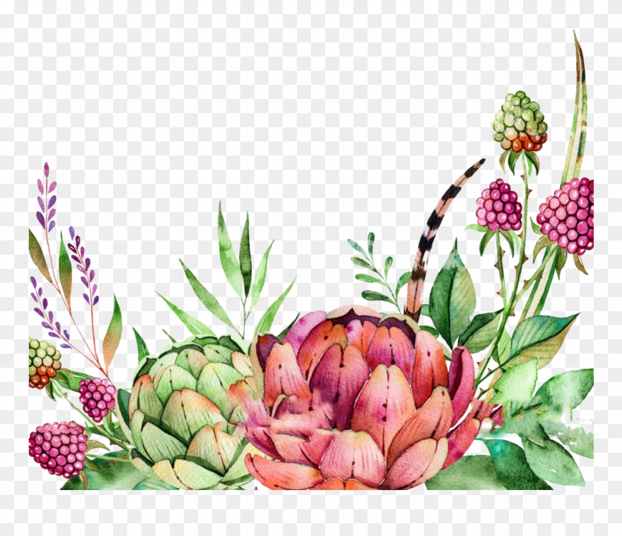 Free Watercolor Crane Pattern Png - Colorful Succulents Watercolor Border Clipart
