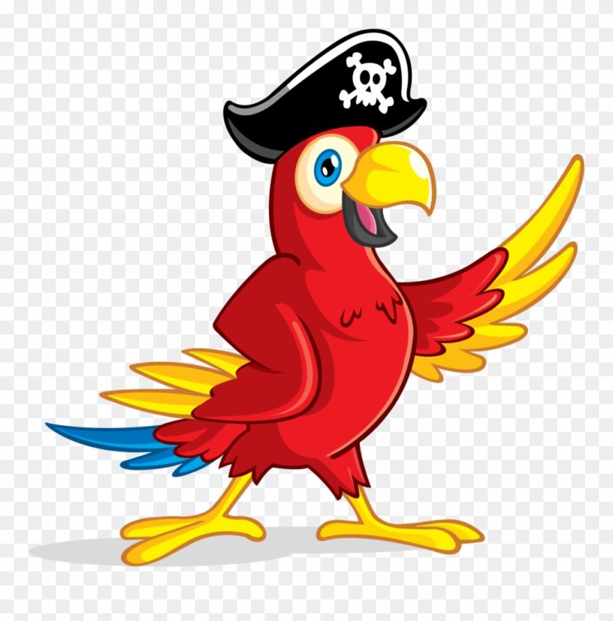 Parrot Clipart Transparent Background Pirate Parrot