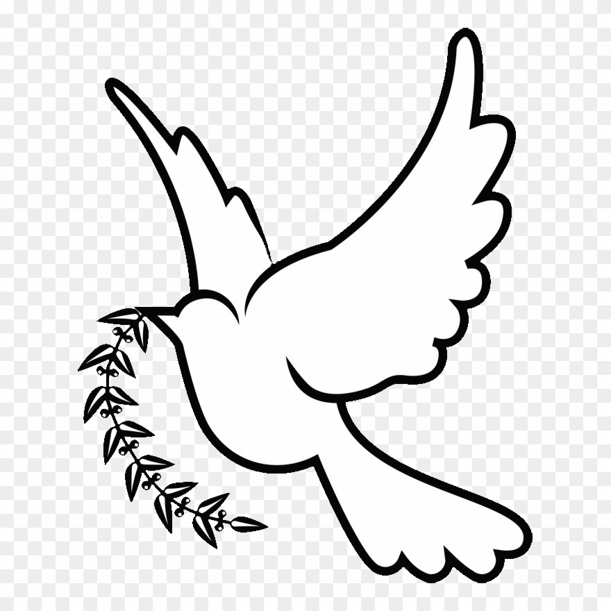 Doves Drawing Png White Dove Drawing Png Clipart 478658 Pinclipart