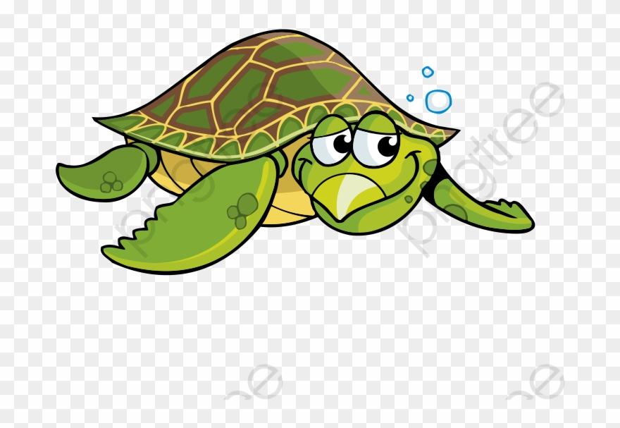 Cartoon Turtle Green Sea Turtle Sea Turtle Clipart Cartoon Sea