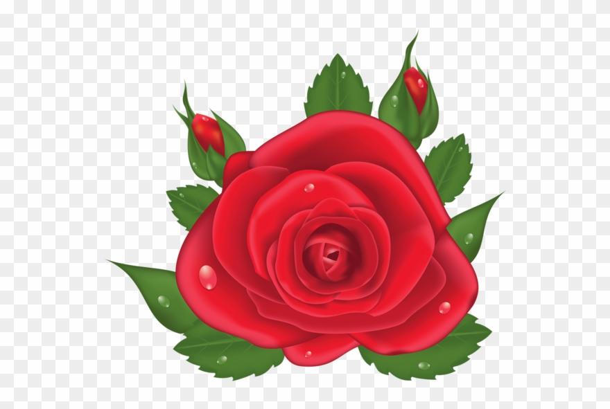 Love Red Roses Flower Clip Art