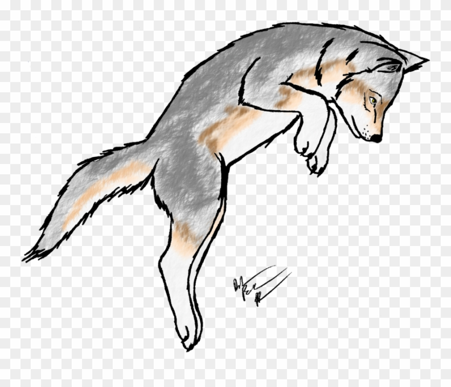 Wolf pup. Clipart transparent for coloring