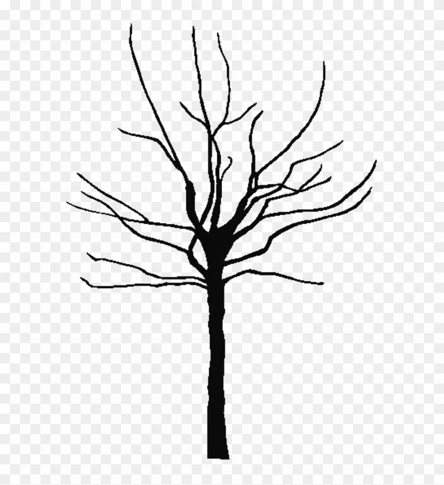 photo regarding Tree Outline Printable called Tree Determine Printable Clipart Most straightforward 143849 Totally free Coloring