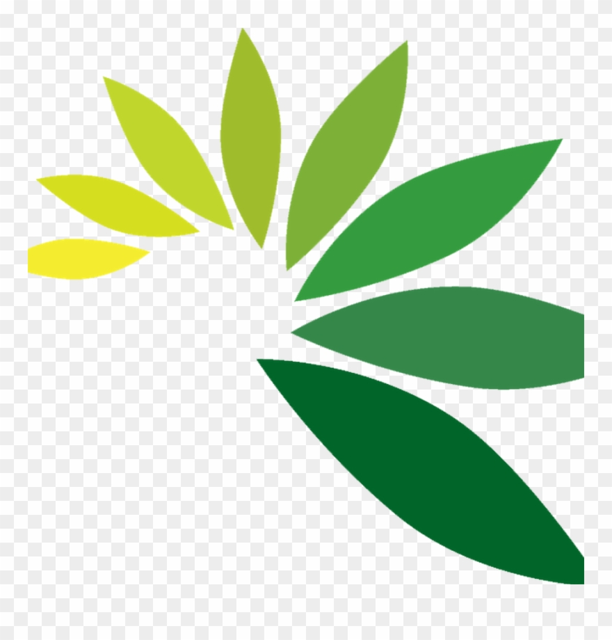 Leaf Logo Png Leaves Png For Logo Clipart 4909764 Pinclipart