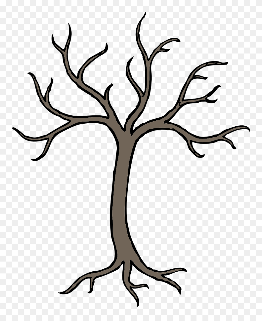 Onlinelabels Clip Art Cartoon Tree Branch Drawing Png Download 4999420 Pinclipart