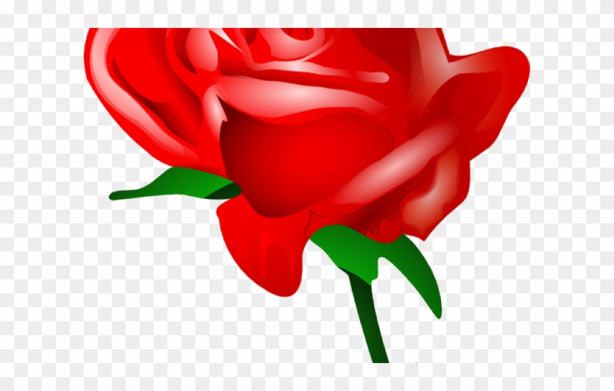 Red Rose Clipart Valentines Day Rose Cartoon Red Rose Png