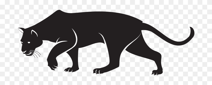 Panther Png Transparent Images Black Panther Drawing Animal Clipart 5297978 Pinclipart