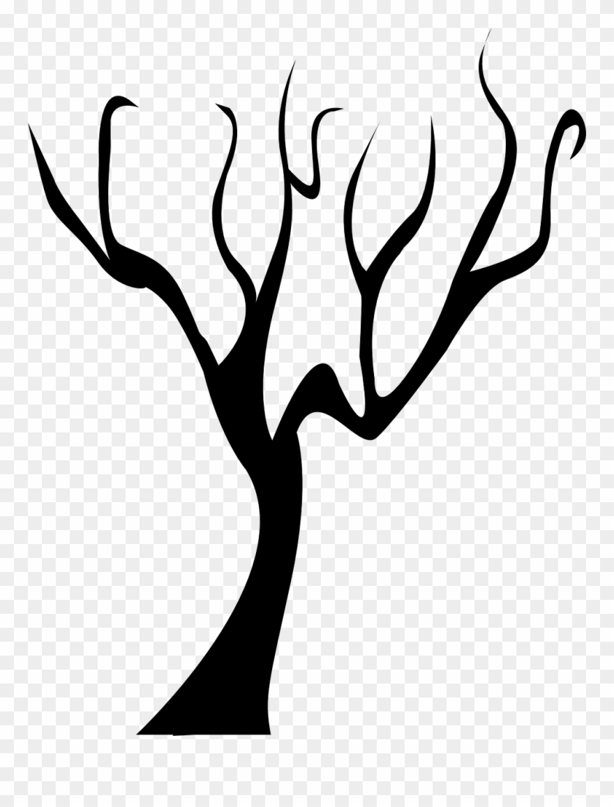 Forest Tree Dead Tree Branch Black Winter Bare Si Tree Without
