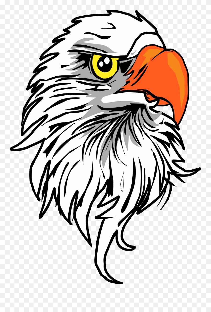 Eagle Head Vector - Download Free Vectors, Clipart Graphics & Vector Art