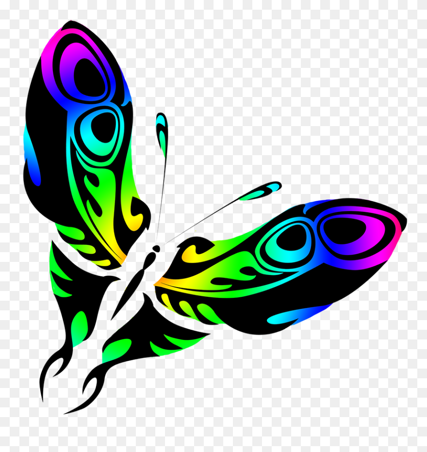 Rainbow Colored Butterfly Drawing Graphic Design Clipart 5342112 Pinclipart