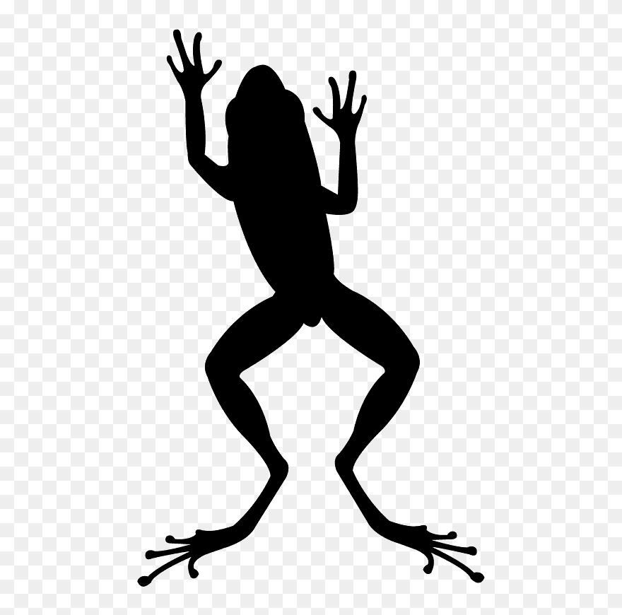 Free Frog Silhouette, Download Free Clip Art, Free Clip Art on Clipart  Library