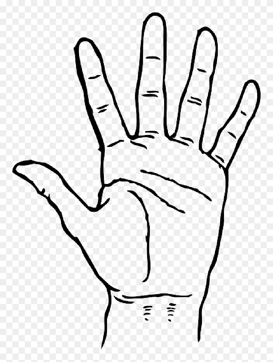 Black Icon Left Right Outline Hand Drawing Open Hand Clip Art Png Download 5415135 Pinclipart Human head silhouette face, face outline free png. black icon left right outline hand