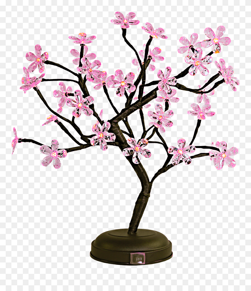 Led Bonsai Tree Png Download Cherry Blossom Bonsai Tree Clipart Transparent Png 5430576 Pinclipart