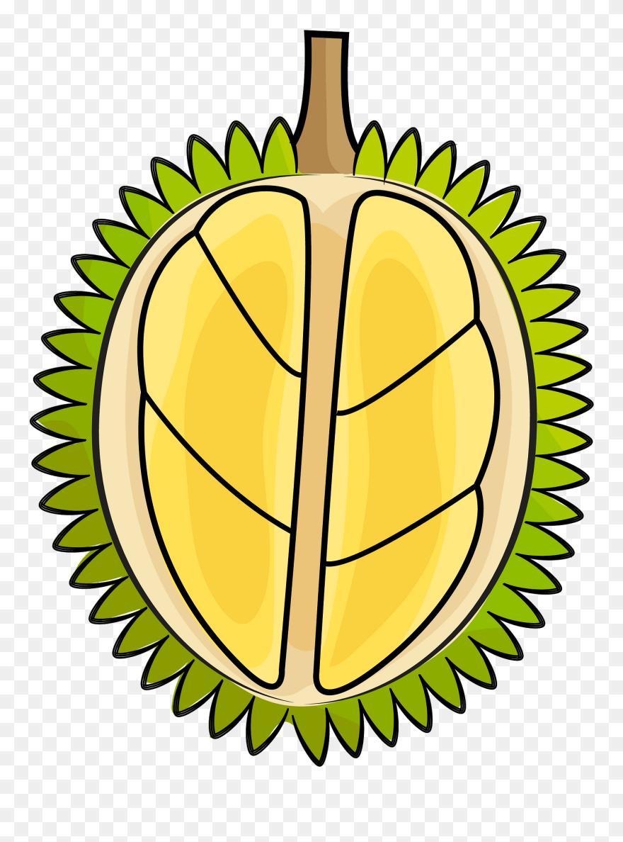 22+ Durian Clipart
