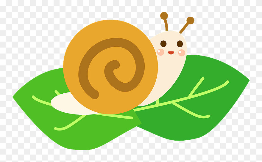 Snail Animal Clipart 6 月 イラスト フリー Png Download Pinclipart