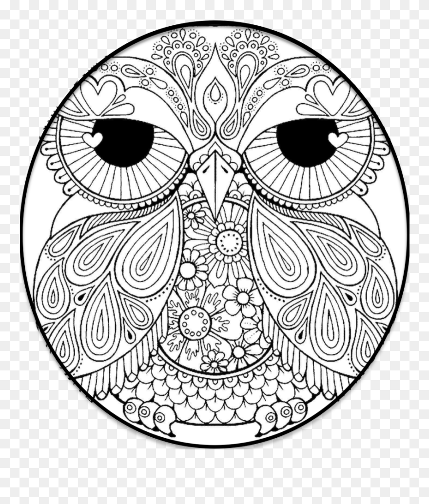 - Owl Coloring Pages Clipart (#5560371) - PinClipart