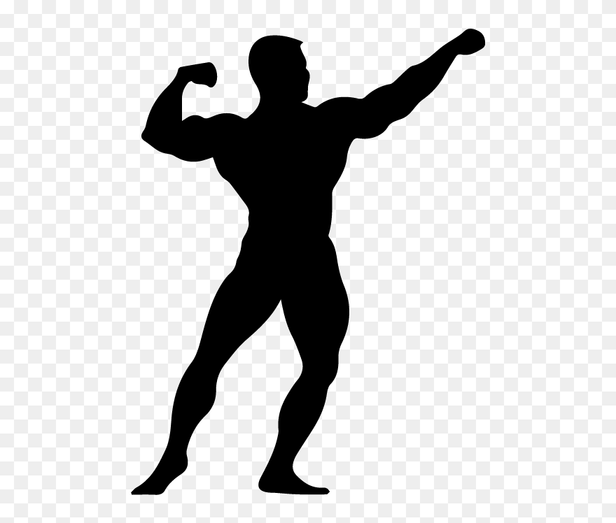 Bodybuilding Gym Clipart Body Builder Png Download 5564859 Pinclipart
