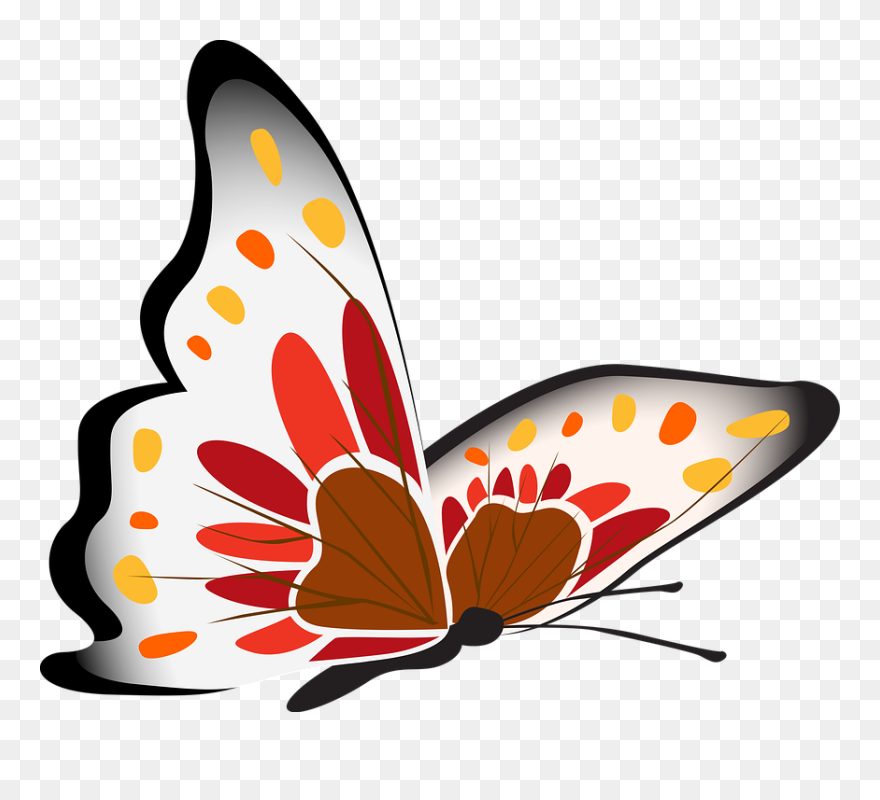 Papillon Clipart Papillon Clipart Png Transparent Png 5577718 Pinclipart
