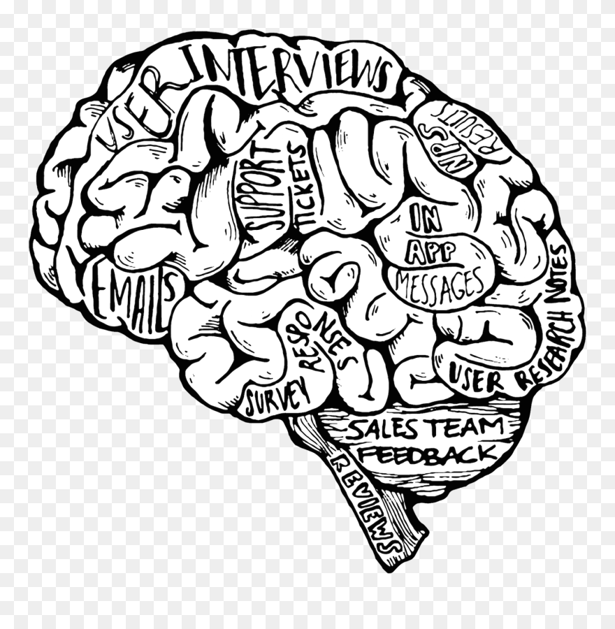 Transparent Brain Drawing Png Meaningful Top Pencil Drawings Clipart 5591179 Pinclipart