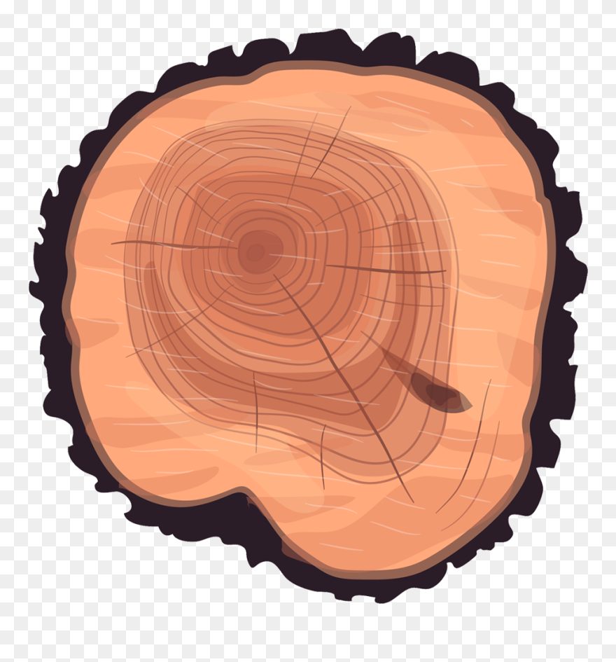 Wheel Eucalyptus Stump Tree Wood Trunk Clipart Cartoon Tree Stump Top Png Download 5623236 Pinclipart The best selection of royalty free tree stump cartoon vector art, graphics and stock illustrations. wheel eucalyptus stump tree wood trunk