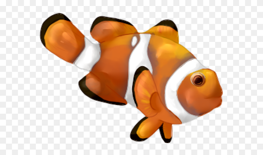 clip art illustration vector graphics clownfish drawing fish clow drawing png download 5636221 pinclipart clip art illustration vector graphics