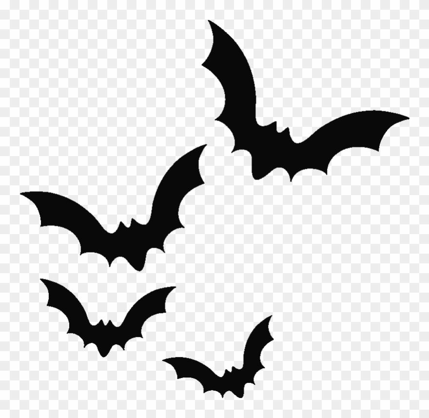 Bat transparent background. Png possum magic clipart