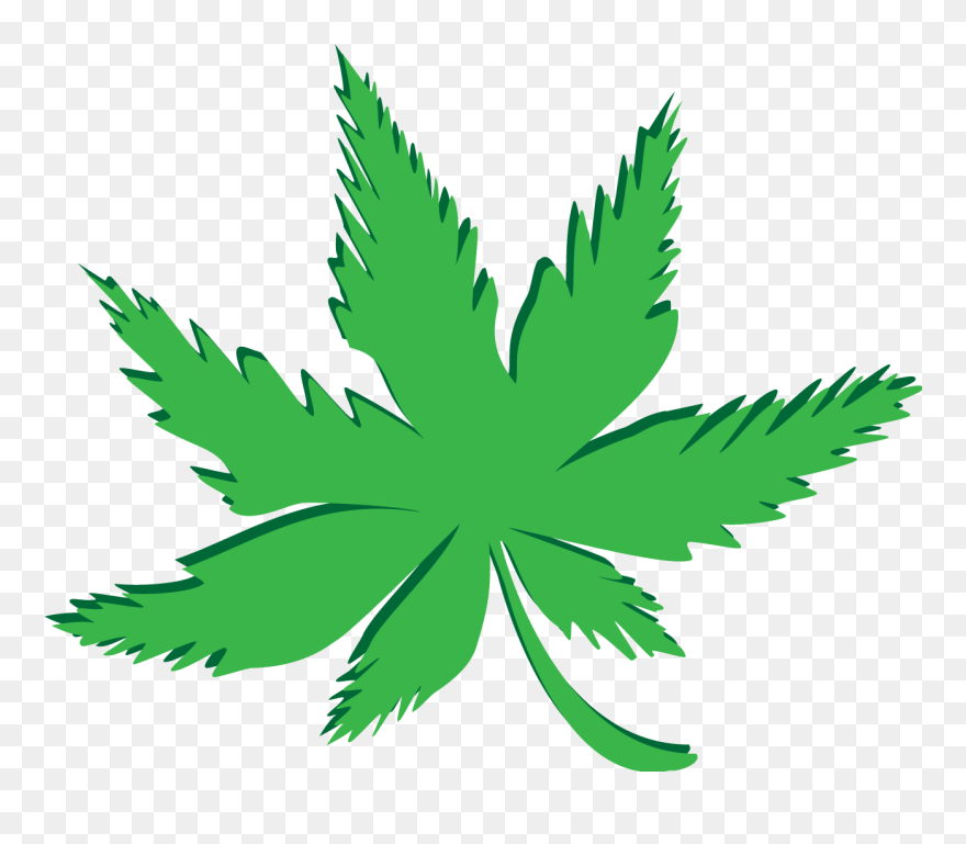 weed leaf lexan softlite polycarbonate and growing stiker kaos daun ganja clipart 5701919 pinclipart weed leaf lexan softlite polycarbonate